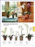 Sullivans-715584_工艺品设计杂志