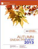 2013BB公司目录-873036_工艺品设计杂志