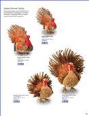 2013BB公司目录-873071_工艺品设计杂志