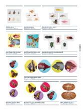 家居工艺品图片-1033789_工艺品设计杂志