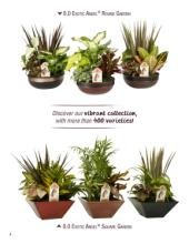 Costa Farms 2017年欧美室内花园花盆设计素-1786849_工艺品设计杂志