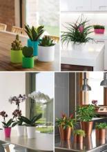 mitu 2017陶瓷花盆设计目录-1789980_工艺品设计杂志
