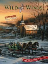Wild Wings