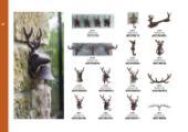 Esschert Design 2017花园工艺品目录-1804885_工艺品设计杂志