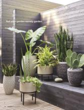 Crate Barrel 2017国外家居目录-1922241_工艺品设计杂志