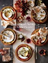 williams 2017年欧美室内日用陶瓷餐具及厨-1930404_工艺品设计杂志