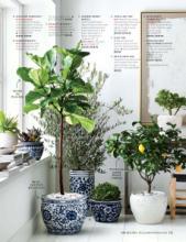 williams 2018年欧美室内日用陶瓷餐具及厨-2063529_工艺品设计杂志