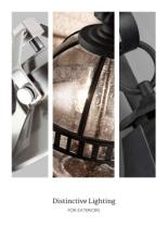 distinctive lighting