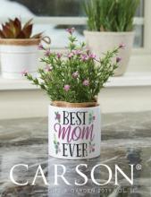 Carson 2019家居圣诞工艺品目录-2323254_工艺品设计杂志