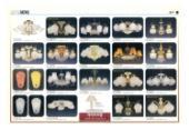 jsoftworks 2019年灯饰灯具设计素材目录-2360365_工艺品设计杂志
