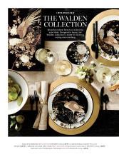 williams 2020年欧美室内日用陶瓷餐具及厨-2726345_工艺品设计杂志