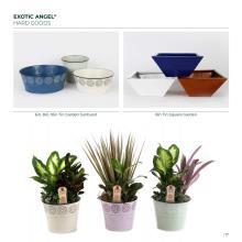 Costa Farms 2020年欧美花园陶瓷花盆设计画-2744413_工艺品设计杂志