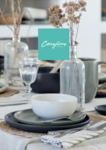 Casafina 2020最新陶瓷素材-2659226_工艺品设计杂志