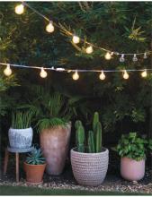 accent decor 2020年欧美花园陶瓷花盆花瓶-2715630_工艺品设计杂志