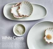 aert 2021年欧美室内日用陶瓷餐具设计目录-2799487_工艺品设计杂志