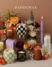 PADDYWAX_国外灯具设计